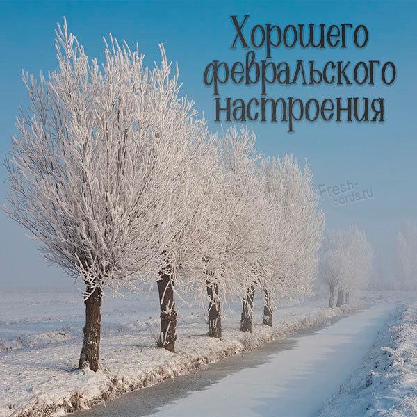 Картинка хорошего февральского настроения