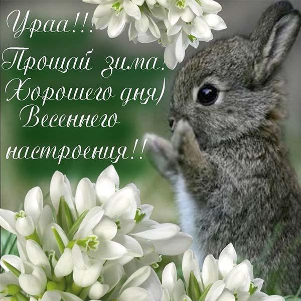 Картинка на Первый день весны с поздравлением