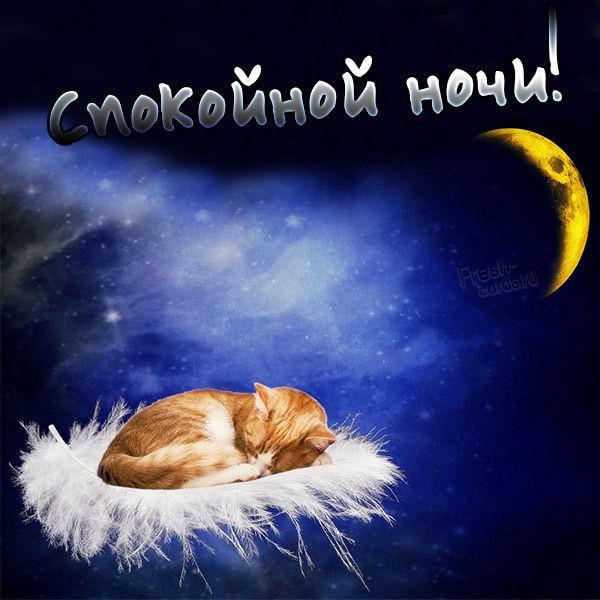 Картинка спокойной ночи отправить