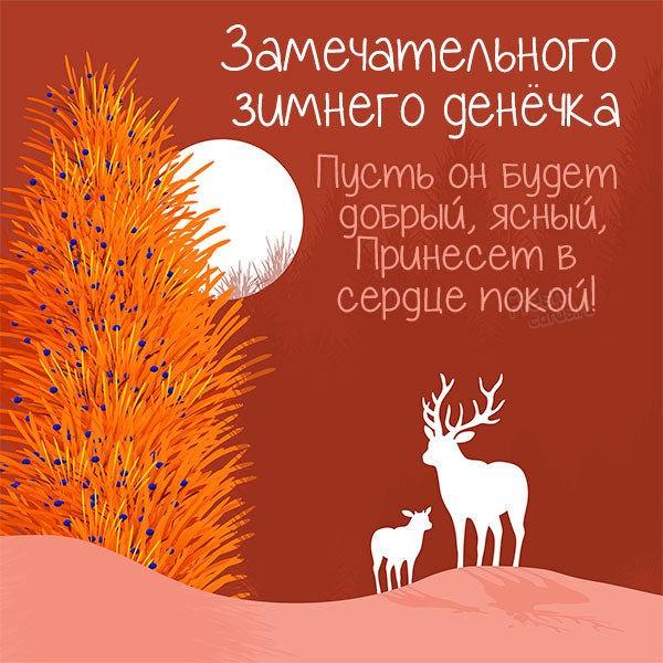 Картинка замечательного зимнего денечка