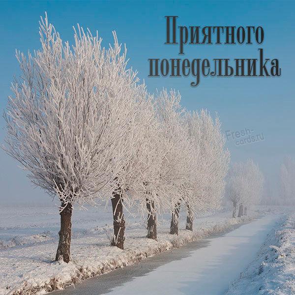 Красивая зимняя картинка про понедельник