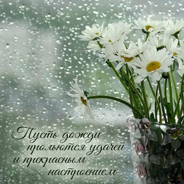 Открытка с хорошим дождливым днем
