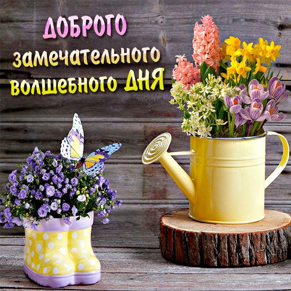 Весенняя картинка доброго хорошего дня красивая