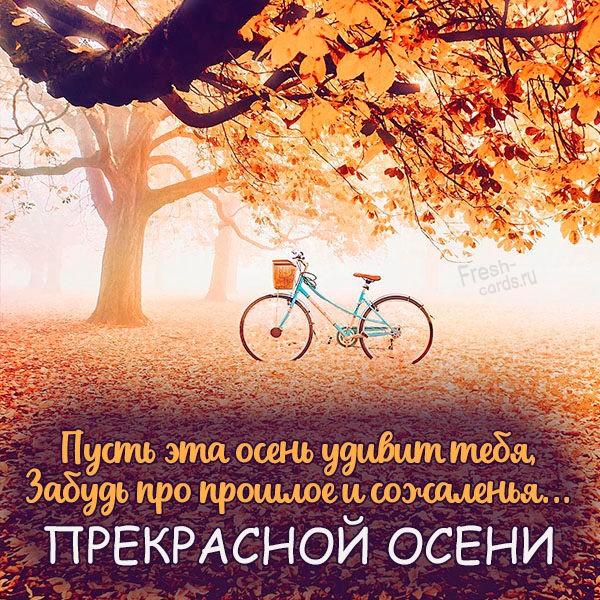 Открытка прекрасной осени красивая