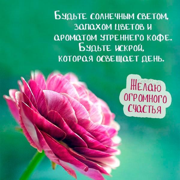 Открытка желаю огромного счастья