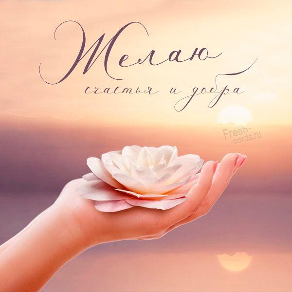 Виртуальная открытка желаю счастья и добра